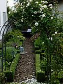 Rosenbogen mit Rosa (weißer Kletterrose), Beete mit Einfassungen