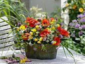 Jardiniere mit Wiesenblumen