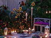 Abendterrasse am Sommerblumenbeet