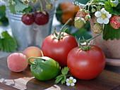 Rote Tomaten (Lycopersicon) und eine grüne Paprika (Capsicum)