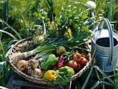 Frisch geerntetes Gemüse im flachen Weidenkorb
