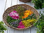 Weidenkorb mit Blüten und Blättern von Tee- und Duftkräutern