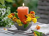 Blüten von Wandelröschen um orange Kerze gesteckt