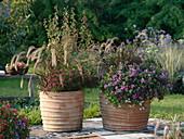 Gräser und Sommerblumen in großen Terracottatöpfen