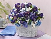 Trockenstrauß aus blauen Sommerastern, Hortensien, Ixodien und Buchsbaum