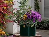 Grünes Blechgefäß bunt bepflanzt