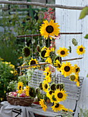 Selbstgemachtes Mobile aus Sonnenblumen