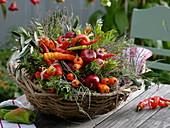 Verschiedene geerntete Paprika und Peperoni in Korb : Peperoni 'Lombardo'
