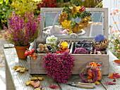 Holzkiste mit Glasdeckel gefüllt mit Nüssen, Blüten, Blättern zum Basteln