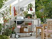Outdoor - Küche auf dem Balkon : Grillwagen, Töpfe mit Glockenchili