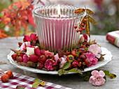 Herbstliches Windlicht im Rosenkranz