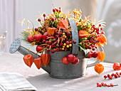Zinkgießkanne als Vase : Hagebutten (Rosa), Physalis (Lampions), Zieräpfel