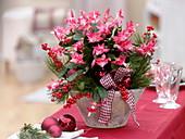 Weihnachtlich geschmückter Weihnachtskaktus in konischer Schale