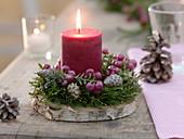 Kerzengesteck auf Scheibe von Betula (Birke)