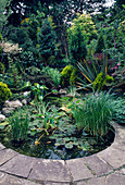 Water Feature: LUSH PLANTING SURROUNDS SMALL STONE EDGED CIRCULAR Pool / POND. Designer: C CAPLIN