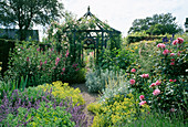 Rosa 'ALOHA' CLIMBING OVER Blue GAZEBO with ALCHEMILLA AND Nepeta IN THE FOREGROUND at WOLLERTON Old HALL, SHROPSHIRE