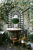 SMALL Town Garden IN Winter: BRICK COURTYARD with ARCHED TRELLIS & HEDERA On WALL, TERRACOTTA Container with CLIPPED Box TREE DUSTED with SNOW. Designer: Anthony Noel