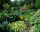 HOSTA, Rodgersia AND LIGULARIA Beside A WOODLAND PATH of TREE SLICES. Designer: ANNE WARING