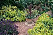 Cordyline IN Pot SURROUNDED by ALCHEMILLA MOLLIS Designer:Lucy Huntington - Mrs DYMOCK'S Garden, STREATLEY