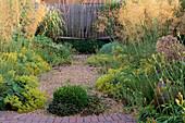 VIEW ACROSS GRAVEL Garden TO WOODEN BENCH. STIPA GIGANTEA ALCHEMILLA MOLLIS AND BUXUS IN F / G. Designer:DAN PEARSON