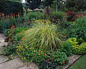 CORTADERIA 'Gold Band',POTENTILLA 'WILLIAM ROBINSON' AND 'Yellow Queen', MARIGOLDS, WOLLERTON Old HALL, SHROPSHIRE