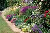 Rosa'LA Ville De BRUXELLES', STIPA BARBATA, Dianthus 'LACED MONARCH',Salvia X SUPERBA. THE Garden HOUSE, GLOS. COLOURFUL SUMMER BORDER.