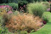 GRASS BORDER with DESCHAMPSIA CESPITOSA & MISCANTHUS SINENSIS 'MORNING LIGHT.' DESIGN: PIET / ANJA OUDOLF