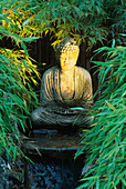 STONE Buddha LIT by Garden & Security LIGHTING IN THE NATURAL & ORIENTAL Water GARDENS, HAMPTON Court 97.