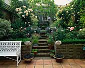 Hanggarten mit Mauer und Klinker-Treppe gesäumt mit Gräsern in Töpfen, Rosa 'Buff Beauty' 'Penelope' (Strauchrosen), Nepeta (Katzenminze), Buxus (Buchs) als Beeteinfassung, weiße Bank