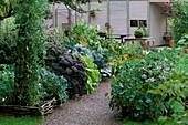 VEGETABLE Garden at Rosendal, SWEDEN: RAISED WICKER BED with VEGETABLES