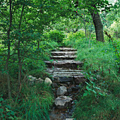 WATERFALL IN A WOODLAND Garden DESIGNED by JULIE TOLL at Rosendal IN Stockholm, SWEDEN