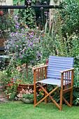 Blue DIRECTORS CHAIR Beside A STANDARD SOLANUM RANTONNETII IN A Pot with NEMESIA. IN THE SMALLER Pot IS DIASCIA 'SALMON Supreme' IN LISETTE PLEASANCE'S London Garden
