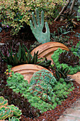 Garden of SUCCULENTS IN Robert Clarks Garden DESIGNED by ARCHIE DAYS: Crushed Lava, ECHEVERIAS, SEDUMS AND ALOES