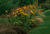 LAKESIDE BORDER: STIPA ARUNDINACEA, Carex FLAGELLIFERA, STIPA TENUISSIMA, RUDBECKIA 'Goldsturm' AND HEMEROCALLIS 'FRANS Hals'. Lady Farm, Somerset