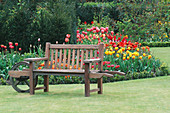 'A PLACE TO SIT': WHEELBARROW SEAT IN Front of ROSE BED UNDERPLANTED with Tulipa 'WILLIAM of Orange', 'STRIPED BELLONA' AND 'ELIZABETH ARDEN'. THE ABBEY HOUSE, WILTSHIRE.