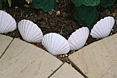 Detail of DECORATIVE SHELL EDGING NEXT TO PAVING SLABS. ROBIN Green AND RALPH CADE'S SEASIDE STYLE Garden, London