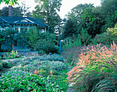 Garden PATH LEADS UP From THE Swimming Pool TO THE KITCHEN TERRACE with PENNISETUM ALOPECUROIDES AND STACHYS BYZANTINA 'Helene VON Stein'. Designer: James Van SWEDEN. AMERICA