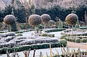 VIEW ACROSS THE FROSTED CELTIC CROSS KNOT Garden, DOMINATED by LOLLIPOP TOPIARY. THE ABBEY HOUSE, Wiltshire