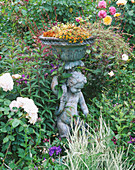 CAROLYN HUBBLE'S SHROPSHIRE Garden : Bronze Statue with English ROSE 'REDOUTE', Rosa 'Magenta' AND Rosa 'Charlotte'