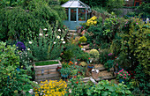 STEEPLY SLOPING BACK Garden with Greenhouse, GRAVEL AND RAILWAY SLEEPER STEPS, MIMULUS AND ROMNEYA COULTERI. ROBIN Green & RALPH CADE'S Garden, London