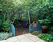 CHILDRENS SWINGS with BARK Chip UNDERNEATH, Blue TRELLIS, FIG (FICUS BROWN TURKEY) , FATSIA JAPONICA AND TERRACOTTA Water FEATURE.