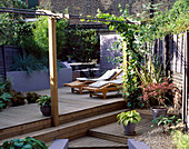 Garden with DECKING DESIGNED by Joe SWIFT: Maple IN Pot, HOSTA IN Pot, LOUNGERS, Pergola with VINE, BAMBOO AND RAISED BORDER with Blue GRASSES