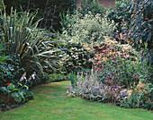 VIEW DOWN SHEILA Stedmans London Garden with LAWN, STIPA GIGANTEA, Echinacea PURPUREA 'MAGNUS', STACHYS LANATA, PHORMIUM TENAX VARIEGATA AND CORNUS Alba ELEGANTISSIMA