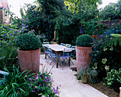LARGE TERRACOTTA Pot PLANTED with Box Ball, Blue Cafe CHAIRS, Italian LIMESTONE TABLE AND PATIO. LISETTE PLEASANCE'S Garden, London - ERPINGHAM Road BACK Garden