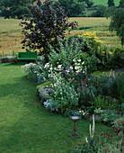 LAUNA SLATTERS Garden, OXFORDSHIRE: Green WOODEN BENCH, Maple, White AND Blue BORDER