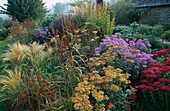 PETTIFERS Garden, OXFORDSHIRE: AUTUMN BORDER with Blue BENCH by NICHOLAS HODGES, SEDUM 'AUTUMN JOY', Aster FRIKARTII, Achillea 'WALTHER FUNCKE', KNIPHOFIA AND STIPA TENUISSIMA