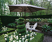 Keukenhof GARDENS, Holland: Formal White Garden with Box HEDGING AND TOPIARY, SEATS AND PARASOL. IN BEDS IS HYACINTH 'CARNEGIE' AND NARCISSUS 'PUEBLO'