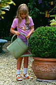 Designer: Clare MATTHEWS - Girl WATERING A Container PLANTED with Box