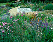 Designer Clare MATTHEWS - Devon Garden - THE WALLED Garden with Echinacea PURPUREA, MONARDA 'BEAUTY of COBHAM', ERYNGIUM 'BLAUKAPPE' , STIPA TENUISSIMA