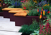HAMPTON Court 2004/ Cocktail Garden / Garden VISION: RAISED BED AND LEBANESE CEDAR BENCH : Hot PLANTING of KNIPHOFIA, PENSTEMON, STIPA TENUISSIMA, IMPERATA CYLINDRICA 'RUBRA'